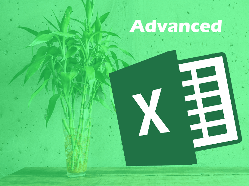 Excel advanced_tiny