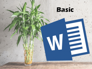Word basic_Tiny